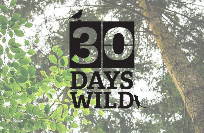 We're going wild in June!! #30 days wild