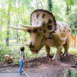dinosaur forest port lympne
